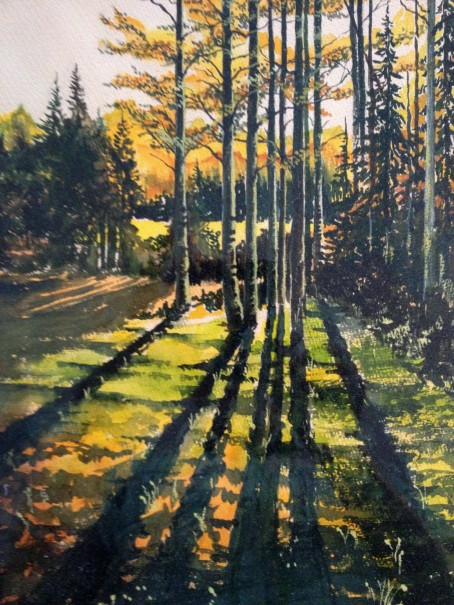 Aspen Shadows - Watercolor by Don Anslow from Arizona Highways Photograph